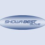 LOgos_Setup_2_showa