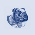 LOgos_Setup_2_topdog